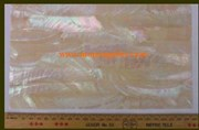 1pc Australian Greenlip abalone laminated sheet 140x240x1.3mm