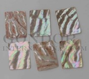 1pc Awabi cabochons rectangle 30x40x2mm