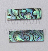 1pc Paua blanks 8x30x1mm