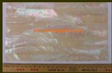 1pc Australian Greenlip abalone laminated sheet 140x240x2.5mm