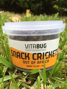 VitaBug Snack Crickets- Out of Africa