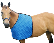 Flair Quilted Nylon Anti Rub Bib