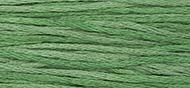 OverDyed Cotton - Weeks Dye Works 5 yard skein - Hunter #2156