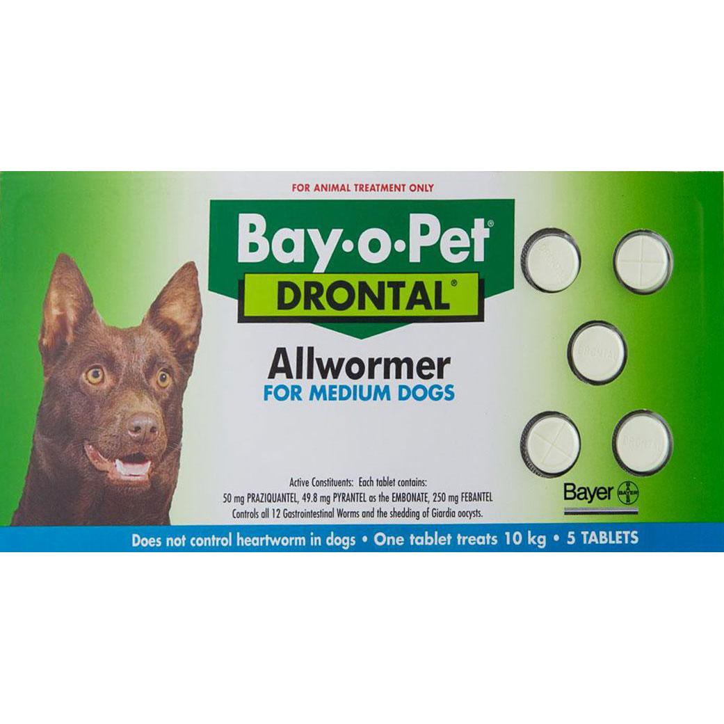 Cheap Flea Treatments For Cats And Dogs