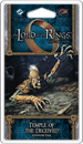 The Lord of the Rings: The Card Game - Temple of the Deceived (Dream-chaser Cycle #3)