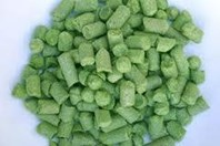 Fortnight Hops 50g
