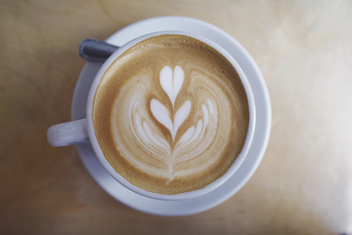 Charcoal Lattes and More Healthy Food Trends