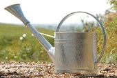 Traditional English Watering Can