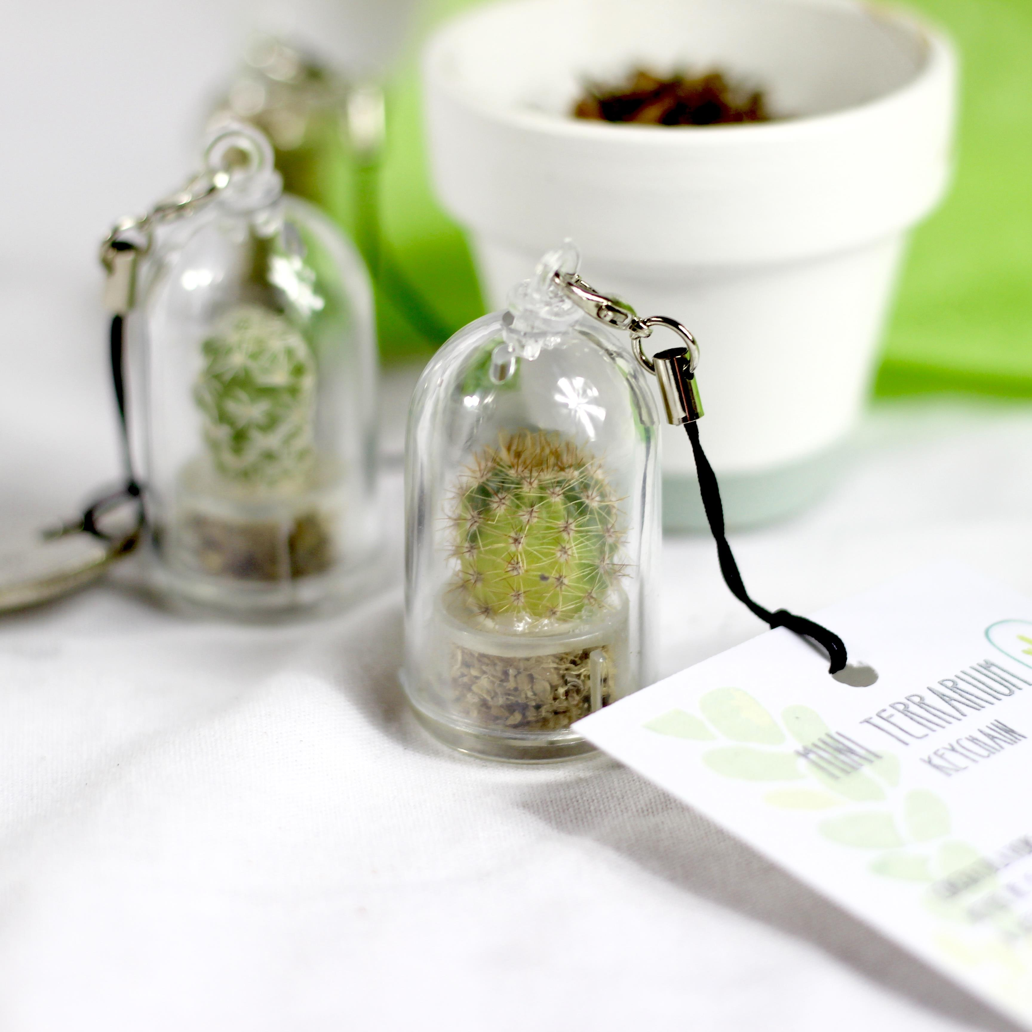 Personalised And Unusual Eco Friendly Garden Gifts Green Gift