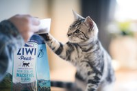 ZIWI for Cats