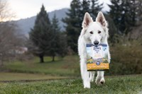 ZIWI for Dogs