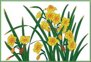 Daffodils Placemat
