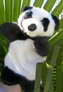 Hand Puppet - Panda Bear WEEKEND SPECIAL!