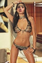 Stunning Gypsy Belly Dancer 4 Piece Adult Party Costume - One size