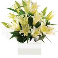Oriental Lilies Arrangements from $65