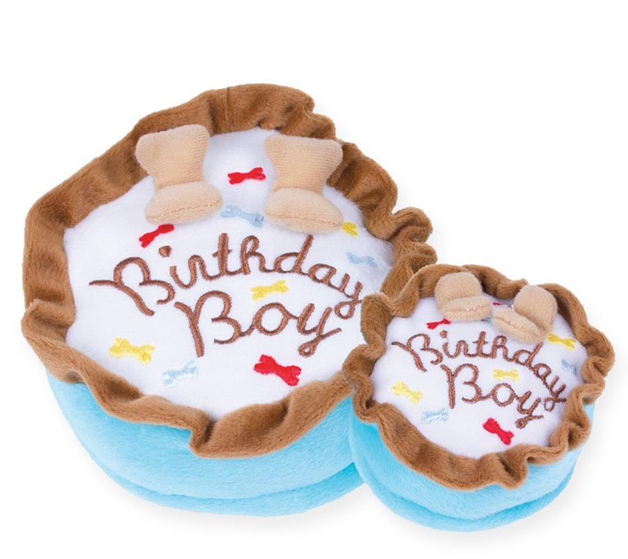 Boy Birthday Cake Toy
