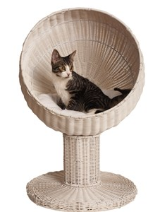 Kitty Ball Bed (White)