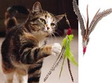 Da Bird Cat Toy (Long Rod)