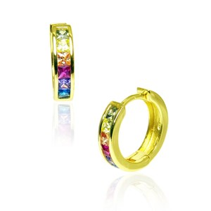 The Rainbow Hoop Earrings