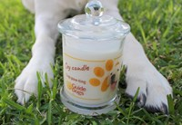 Hand Paw'd Soy Candle