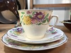 Vintage English Royal Doulton Asters D6161 Tea Cup Trio Saucer Plate