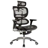 Ergo 1  Ergonomic Mesh Office Chair with Headrest.Try it befor you buy it!