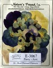 Pansies (Dried Flowers) 16 pk