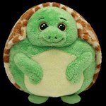 TY Beanie Ballz - ZOOM the Turtle