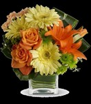T550-1A Teleflora's Citrus Crush