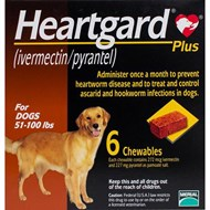 Heartgard Chewables Plus Brown Dogs 51-100 lbs (23-45kg) - 6 Chewables