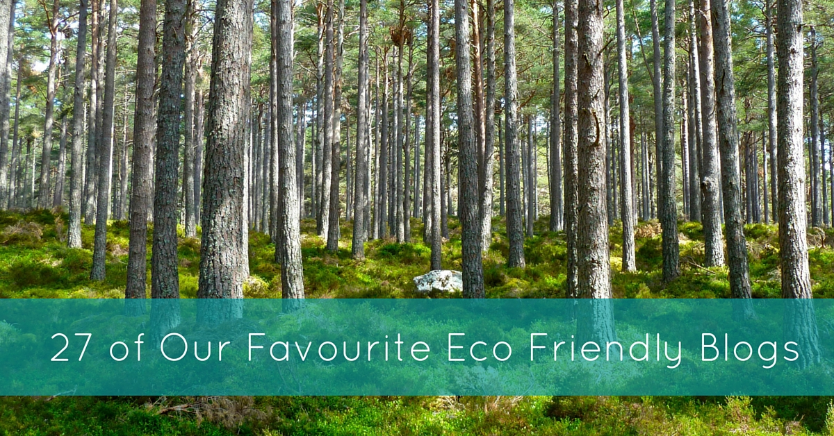 27 of Our Favourite Eco Friendly Blogs